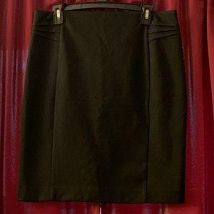 Express Dress Skirt